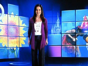Disney-World-TV-9.jpg